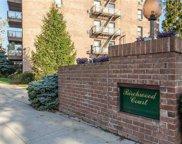 4 Birchwood E Court Unit #4J, Mineola image