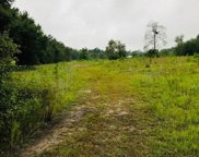12850 COUNTY ROAD 121, Bryceville image