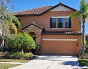 20327 Heritage Point Drive, Tampa image