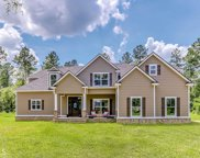 213 Captain Cone Ct, Brooklet image