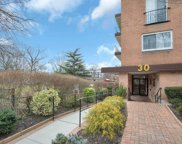 30  Barstow Road, Great Neck image