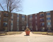 140 West Wood Street Unit 430, Palatine image