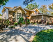3333 Landing Place, Palm Harbor image