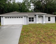 9830 N Sandree Way, Dunnellon image