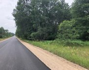 N Roberts Unit 20 acres, Grayling image