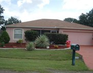 650 N Delmonte Court, Kissimmee image