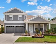 10445 Moss Rose Way, Orlando image