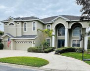 1229 Darlington Oak Circle Ne, St Petersburg image