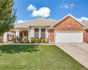 10117 Red Bluff Lane, Fort Worth image