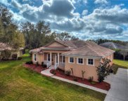 11420 Cypress Hill Street, Clermont image