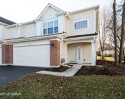 16 Meadow Court, Schaumburg image