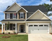 313 Wessinger Farms Road, Chapin image