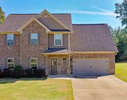 429 Red Bay Cove, Alabaster image