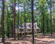 150 Country Manor Dr, Chelsea image