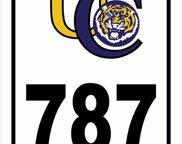 787 Thomas Boyd Dr, Baton Rouge image