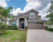 5845 Tarleton Way, Mount Dora image