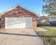 9952 Sparrow Hawk Lane, Fort Worth image
