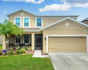 13164 Royal Pines Avenue, Riverview image