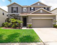 11119 Golden Silence Drive, Riverview image