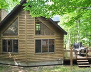 921 Timber Valley Road, Gaylord image