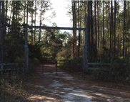 526 Mill Rd, Carrabelle image