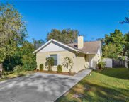 7615 Caracal Court, Tampa image