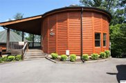 1082 Towering Oaks Dr, Sevierville image