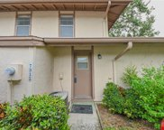 7311 Los Padres Court, Tampa image