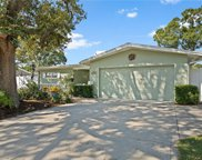 2101 Dolphin Boulevard S, St Petersburg image