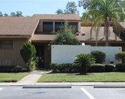 5225 Imperial Lakes Boulevard Unit 9, Mulberry image