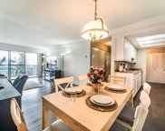 1025 Cornwall Street Unit 205, New Westminster image