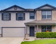141 Weeping Way, Cibolo image