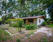 16212 Dew Drop Lane, Tampa image