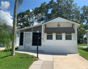 217 Crown Point Drive, Nokomis image