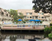 15 Deallyon Avenue Unit #88, Hilton Head Island image