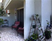 1001 Pearce Drive Unit 111, Clearwater image