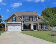 314 Aleutian Way, Fountain Inn image