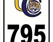 795 Thomas Boyd Dr, Baton Rouge image