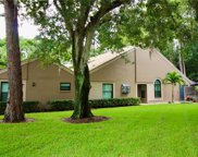 2906 Windmoor Drive S, Palm Harbor image