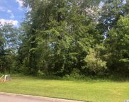 646 Timber Creek Rd., Loris image