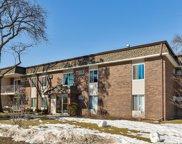 1133 Miller Lane Unit #207, Buffalo Grove image