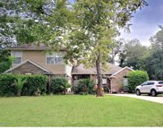 313 LOLLY LN, St Johns image