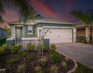 220 Caryota Court, New Smyrna Beach image