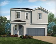 34063 White Fountain Court, Wesley Chapel image