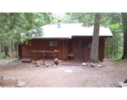 51992 BIG TOO MUCH LAKE RD, Bigfork image