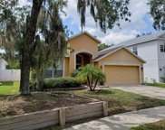 7323 Brightwater Oaks Drive, Tampa image