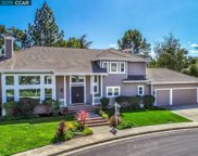 807 Waingarth Way, Danville image
