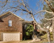 847 Peg Oak, San Antonio image