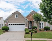 48461  Snapdragon Lane, Indian Land image