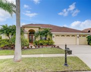 11908 Middlebury Drive, Tampa image
